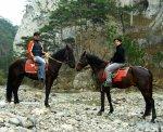 Конные прогулки в лесу над Ялтой